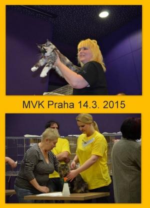 MVK Praha - hotel DAP