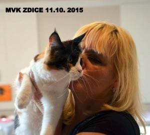 MVK ZDICE 11.10. 2015