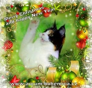 Krásné vánoce !!!