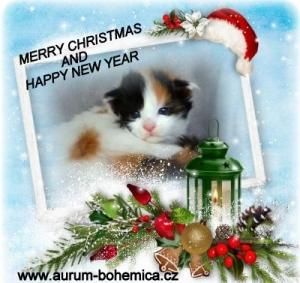 Krásné svátky Vám všem !!!