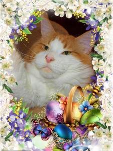 Veselé Velikonoce a bohatou pomlázku !!!
