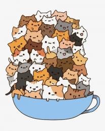 Momentálně nemáme žádná volná koťátka, ale máme plány na rok 2021. Sledujte, prosím, naše stránky !