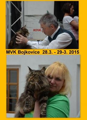 MVK Bojkovice